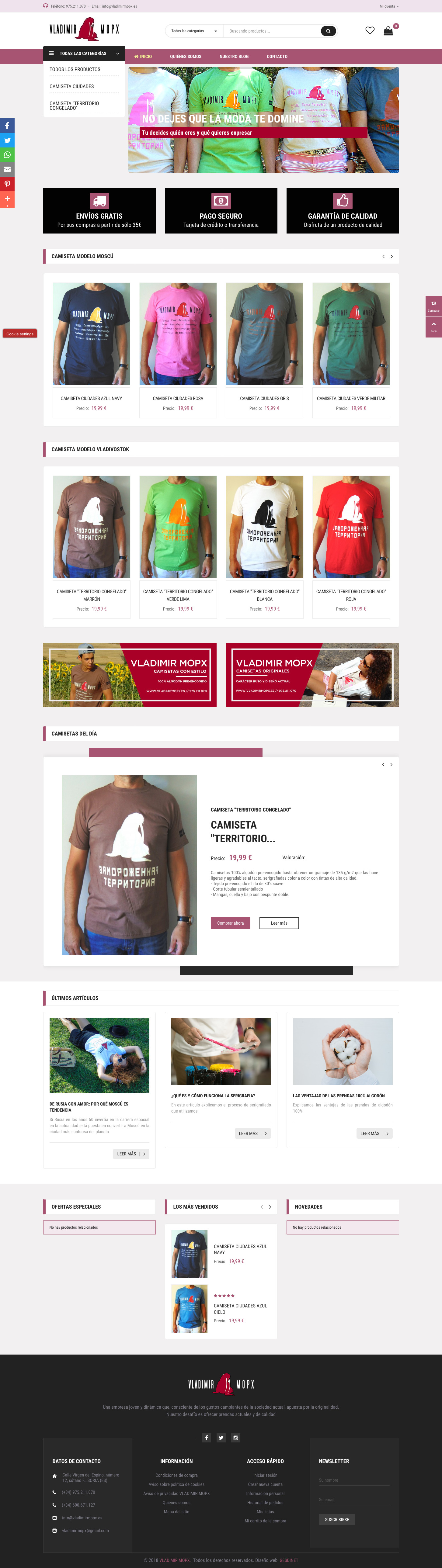 GESDINET. Diseño de páginas web